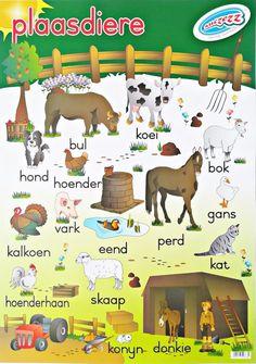Grade R Worksheets, Tracing Worksheets, Preschool Worksheets, Preschool Learning, Preschool Ideas, Frog Nursery, Nursery Art, Work Activities, Educational Activities