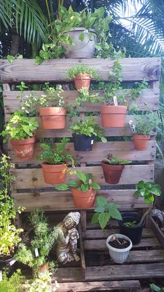 DIY upcycle Pallet herb garden. Great vertical garden design by Eric of Edison Ford winter estates in Ft. Myers, Fl. Clay pots secured to a pallet with Hangapot, the hidden flower pot hanger made in America.
