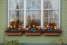 Fall Window Boxes Transition to Winter by Cathy Litrofsky, via Behance