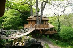 Cliffside treehouse. Suspension bridges on tree houses are so cool. >> ya know, now that i think about it, a tree house might not be so bad during a zombie apocalypse :) as long as it is something a little higher off  the ground than this and inter connected between more trees :)