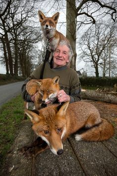 Patsy Gibbons and his rescued Foxes