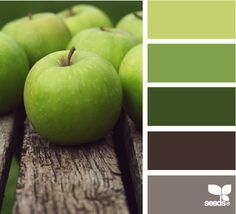 Exterior green paint colors for house design seeds 30 ideas Design Seeds, Paint Colors For Home, House Colors, Paint Colours, Wall Colors, Brown Color Schemes, Apple Coloring, Color Palate, My New Room