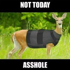 Lol I love hunting humor! Funny Hunting Pics, Deer Hunting Humor, Hunting Jokes, Funny Deer, Funny Animal Pictures, Best Funny Pictures, Funny Photos, Funny Animals, Cute Animals