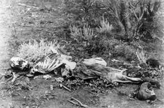 Inside A Body Farm | IFLScience. I didn't know that there's a body farm not to far from where I live -- one of about five in the world!