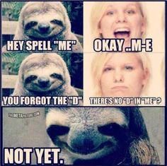 More creepy sloth