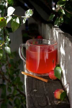 Crab Apple Cider | I juiced my apples and then put it in the crockpot with the spices/way less sugar than the recipe calls for.