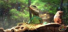 Epic Chinese Water Dragon at Zoo Med Laboratories. Chinese Water Dragon, Beautiful Dragon, Reptiles, Cute Animals, Kitty, Puppies, God, Pets, Celebrities