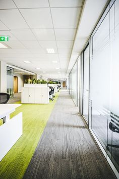 Office Fit Out - Interface Urban Retreat Carpet - Prothena Bioscience, Dun Laoghaire, Co. Dublin, by Think Contemporary