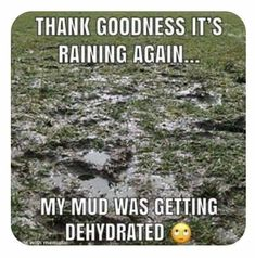 Weekly Giggles May 26 - С Крещенским СочеРWhatsapp Smiley, Cool Things To Make, Good Things, Florida Weather, Happy Sunday, Google Images, Mud, Rain, Humor