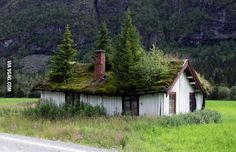 Abandoned home, Norway style