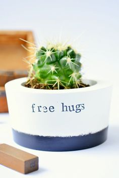 Succulent Cactus Planter Pot Vase free hugs
