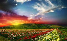 Beautiful Landscape Wallpaper, Nature Wallpaper, Landscape Paintings, Hd Wallpaper, Desktop Wallpapers, Hd Backgrounds, Beautiful Wallpaper, Laptop Wallpaper, Black Wallpaper