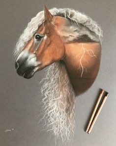 Sometimes ideas come straight to my head so as soon as I saw @haflinger_storm_naomi I knew I had to draw a storm inside of this horse! If you swipe left you can see the whole process of making it Let me know what you think! Based on a @elianevanschaikphotography photograph #horseart #equineart #haflinger #horses_of_instagram #softpastels #creative_animalart #storm #horseartist #koń #rysunek #gioconda #artwork #fineart #artgallery #realistic_arts #art_collective #drawing #pferd
