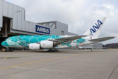 On March Airbus rolled out the second All Nippon Airways (ANA) from the paint shop, at its Hamburg factory. The second is the Emerald Green, livery, and will be delivered to the airline this year, bearing the registration Airbus A380, Hawaii Flights, All Airlines, Jet Engine, Paint Shop, Aviation, Twitter, Aircraft, Commercial