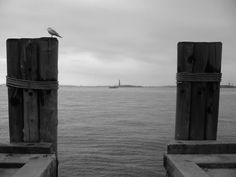 View Toward Statue of Liberty NYC, Cat Roche