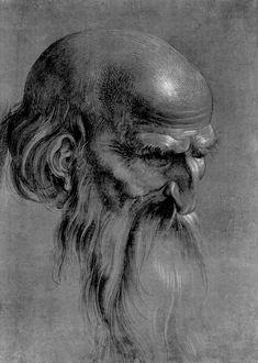Head of an apostle - Alberto Durero (en alemán Albrecht Dürer); Pierre Auguste Renoir, Life Drawing, Painting & Drawing, Drawing Heads, Brush Drawing, Renaissance Kunst, Albrecht Dürer, Jan Van Eyck, Charcoal Portraits