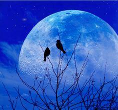 """I would give you the Moon"" by John Rivera, via 500px."