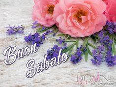 buon sabato immagine con frase aforisma fiori rosa lavanda.jpg