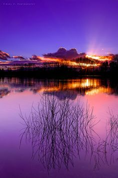 lifeisverybeautiful:  Sunset behind the lake by Gael F. Photography on Flickr.