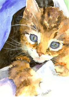 Kitten In Blue Painting by Christy Freeman - Kitten In Blue Fine Art Prints and Posters for Sale