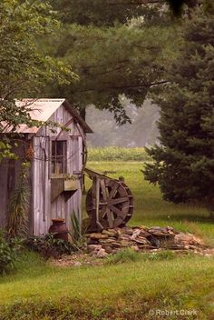 Country Living ~ By the shed...
