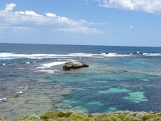 Rottnest Island, WA - great spot to ride bikes, enjoy sun, surf and sand - for a day trip or a few days - kids will love it!