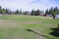 319 Pines Crescent, Turtle Lake This vacant lot in Turtle Lake's South Bay neighbourhood - 20 metres by 31.56 metres Lots For Sale, Crescent City, Turtle, Pine, The Neighbourhood, Homes, Building, Pine Tree, Turtles