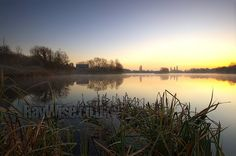 Sun breaks over a vast expanse of water in Wraysbury, Herts, UK - the early morning mist shifts across as is sets the mood - to the left reflections of bare winter trees and an old wooden barn can be seen - in the foreground a clump of frozen reeds..