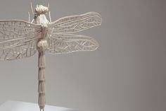 Insects made from matchsticks