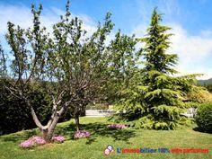 A 1,2km du village et à 1 heure des plages et proche du verdon. Située dans un secteur calme et résidentiel, type mas provençal de 170 m2 édifiée sur un terrain de 3000 m2 paysager et clos. Piscine. Sans vis à vis. Proche commodités  http://www.partenaire-europeen.fr/Annonces-Immobilieres/France/Provence-Alpes-Cote-d-Azur/Var/Vente-Maison-Villa-F5-AUPS-1013921 #maison #jardin