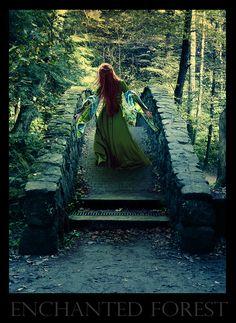 Google Image Result for http://www.deviantart.com/download/99313447/Enchanted_forest_by_Gabby_Art.jpg