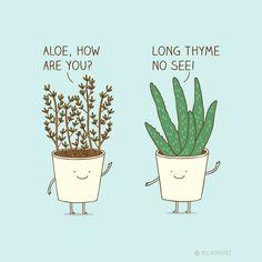 Funny Pun: Plant Humor