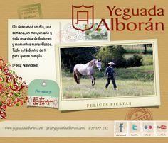 Yeguada Alborán desea a todos los apasionados del caballo Pura Raza Español Felices Fiestas y un Próspero 2013.