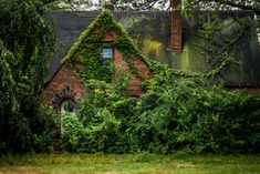 These abandoned buildings have become a thing of beauty - after being derelict for so long that mother nature has reclaimed the site. Abandoned Buildings, Abandoned Places, Haunted Places, Woodlands Cottage, Forest Cottage, Forest House, Forest Girl, Fairytale House, Journal Du Design