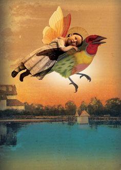 """""""Lovebird"""" by Catrin Weiz-Stein"""