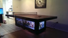 Combination ping pong table and aquarium