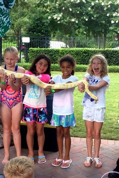 Campers amazed/terrified of their new reptilian pal at week 2 of Nocatee's Summer Camp! Summer Days, Summer Fun, Summer Time, Day Camp, Campers, The Neighbourhood, Tees, Children, Young Children