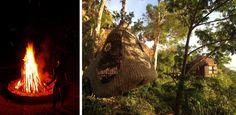 Sleep in a treehouse in Palawan.