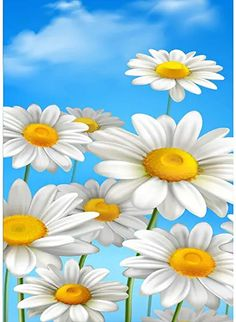 Amazon.com : daisy flower painting Daisy Wallpaper, Wallpaper Backgrounds, Iphone Backgrounds, Beautiful Flowers Wallpapers, Cute Wallpapers, Cellphone Wallpaper, Iphone Wallpaper, Graffiti Kunst, Wallpaper Animes