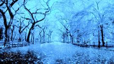 winter & by wmourad364. @go4fotos