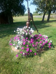 Flowers around the old well pump.