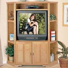 American Transitions Corner Entertainment Center