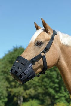 Shires Equestrian Comfort Grazing Muzzle Nylon with Throatlatch and Rubber Base