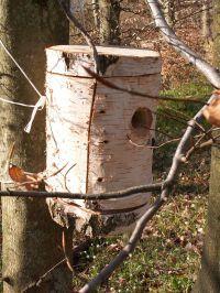 Fuglekasse af birk