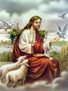 "Eleven animal rights quotes from the Bible with discussion and commentary. ""Go ye into all the world, and preach the gospel to every creature"" (Mark Pictures Of Jesus Christ, Religious Pictures, Religious Art, Good Shepard, The Good Shepherd, Animals In The Bible, Animal Rights Quotes, Image Jesus, Christian Artwork"