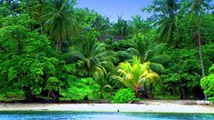 Papua, New Guinea islands South Pacific ~ I will retire there if I can (the South Pacific)
