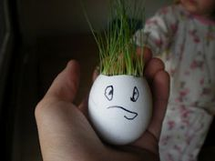 eggshell planter - quick sprout spring activity for kids