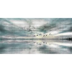 Parvez Taj 'Birds Skylight' Painting Print on White Wood - Free Shipping Today - Overstock.com - 17442356 - Mobile
