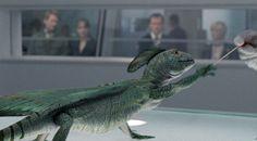 Primeval Rex :D