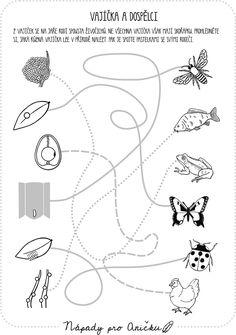 8 Nejlepsich Obrazku Z Nastenky Pro Deti Kindergarten Preschool A